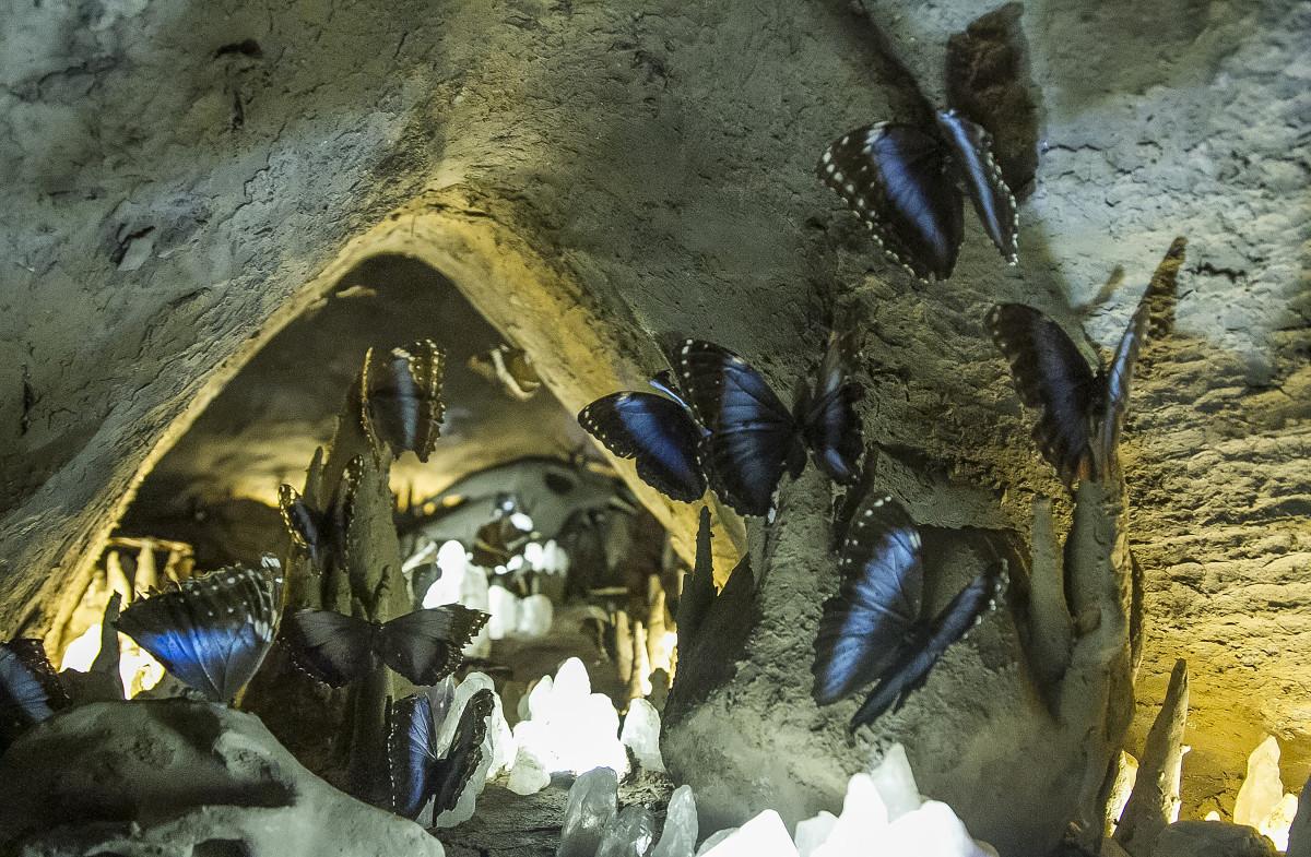 12 paredes memorius mud interior