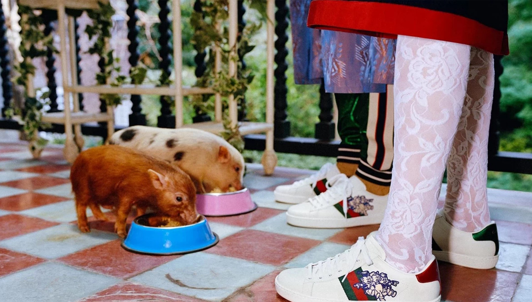 Gucci Launches the Year of the Piggy