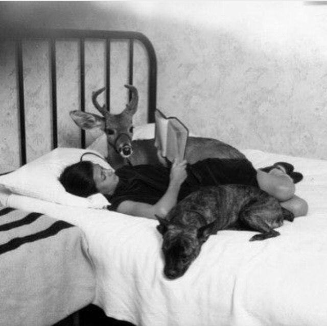 frida and pet deer